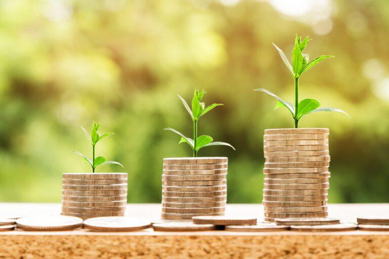Budget economico.   Gestire la pianificazione economica e monitorare le performance.